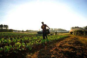 14 mayıs dünya çiftçiler günü